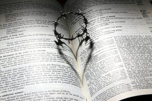 """Jemandem die Leviten lesen"""